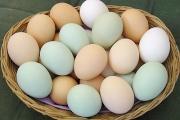 К чему снятся яйца.