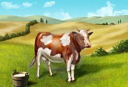 К чему снится корова. Корова в вашем сне. Узнайте к чему снится корова по сонникам Миллера, Ванги, Фрейда и другим.