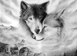 К чему снятся волки. Волки в вашем сне. Узнайте к чему снятся волки по сонникам Миллера, Ванги, Фрейда и другим.