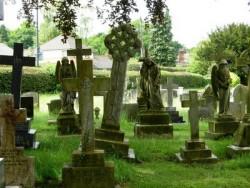 К чему снится кладбище. Кладбище в вашем сне. Узнайте к чему снится кладбище по сонникам Миллера, Ванги, Фрейда и другим.