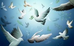 К чему снятся птицы. Птицы в вашем сне. Узнайте к чему снятся птицы по сонникам Миллера, Ванги, Фрейда и другим.