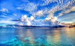 К чему снится море. Море в вашем сне. Узнайте к чему снится море по сонникам Миллера, Ванги, Фрейда и другим.