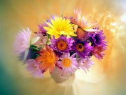 К чему снятся цветы (цветок). Цветы в вашем сне. Узнайте к чему снятся цветы по сонникам Миллера, Ванги, Фрейда и другим.