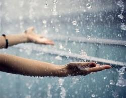 К чему снится дождь. Дождь в вашем сне. Узнайте к чему снится дождь по сонникам Миллера, Ванги, Фрейда и другим.